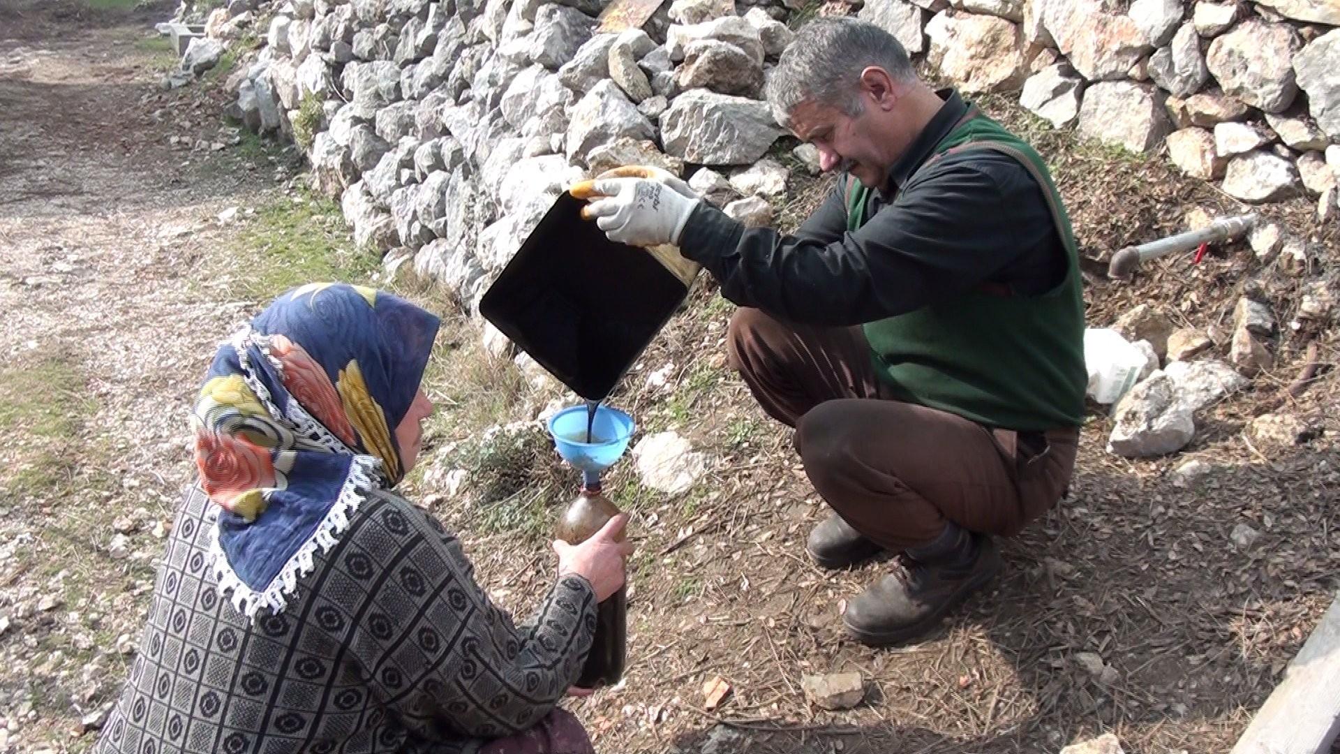 """<p>Antalya'da Sedir ağaçların kazılan toprağı içine yerleştirilen varillerde yakılarak elde edilen katranın kilosu 150 liradan alıcı buluyor. Her derde şifa katran yağı için sadece önceden sipariş verenler yağa sahip olabiliyor.</p> <p></p> <p>Antalya'nın Akseki ilçesi Alaçeşme mahallesinde yaşayan Abdullah Güven, eşi ile birlikte atadan kalma yöntemle 'katran yağı' üretiyor. Katran yağı üretimi için, ormandan kereste tüccarları tarafından kesimi yapılmış veya yıkılmış sedir ağaçlarını satın alan Abdullah Güven eve kadar taşıdığı sedir ağaçlarını, el motoru, balta ve balyozlarla küçük odun parçaları haline getiriyor. Bu parçalar keserle parçalanarak, küçük çıralar elde ediliyor. Eğimli bir arazide açılan çukurun içine yerleştirilen varillerin ucuna demir bir boru yerleştiriliyor. Toprağa gömülü olan varilin içine küçük çıra parçaları tek tek döşeniyor. Varilin hava almaması için kelepçe ile sıkıştırılıyor. Daha sonra toprakta gömülü olan varilin üzeri ve etrafı dallar ile kapatılıp, yakılıyor. Bu işlem beş altı saat sürüyor ve sonunda damıtılan katran yağı şişelere dolduruluyor.<br />Keser ile küçük çıralar haline getirdiğini ve bu şekilde ham madde haline getirdiğini söyleyen Uğur, """"Eskiden atalarımız sedir yağını çıkarmak için açtıkları çukurlarda damla yöntemi ile yapıyorlardı. Ben sedir yağını çıkarmak için kendim deneme yanılma yöntemiyle keşf ettiğim yöntemle normal varilin içine girecek şekilde özel varil yaptırdım. Varilin içerisine yaptırmış olduğum ikinci varili yerleştiriyorum. Varilin içerisinde ince delikleri var. Dış kısmına ise özel boru koydum. Damlama sistemi ile ikinci varilde biriken katran yağı borularla dışarıya çıkıyor"""" dedi.<br /><br /></p> <p><strong>Posasını bile değerlendiriyorlar</strong></p> <p></p> <p>Katran yağını tamamen doğal yöntemlerle ürettiğini söyleyen Güven, """"Yakmış olduğum katran ağacının posasını dahi değerlendiriyorum. Bu mangal kömürü olarak ta kullanıyoruz. Sedir ağacının her parçasını değerlendiriyorum. Bu oldukça zahmetli"""